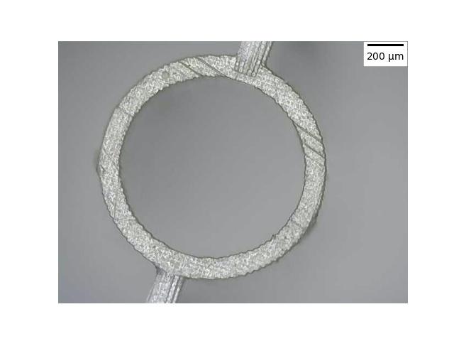 Mikroskopische Aufnahme einer der bei DESY im 3D-Druckverfahren hergestellten Kapillare. (c) DESY: Max Kellermeier